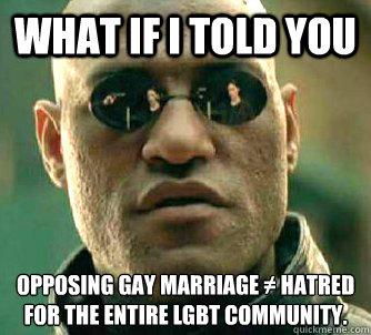 What if I told you opposing gay marriage ≠ hatred for the entire lgbt community.