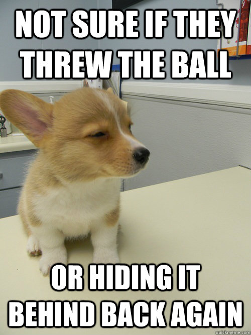NOT SURE IF THEY THREW THE BALL OR HIDING IT BEHIND BACK AGAIN - NOT SURE IF THEY THREW THE BALL OR HIDING IT BEHIND BACK AGAIN  Not Sure Dog