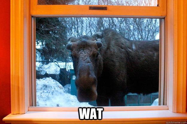 WAT - WAT  Wat Moose