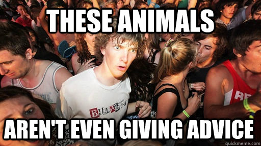 These Animals Aren't even giving advice - These Animals Aren't even giving advice  Sudden Clarity Clarence