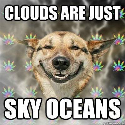 Clouds are just Sky oceans  Stoner Dog