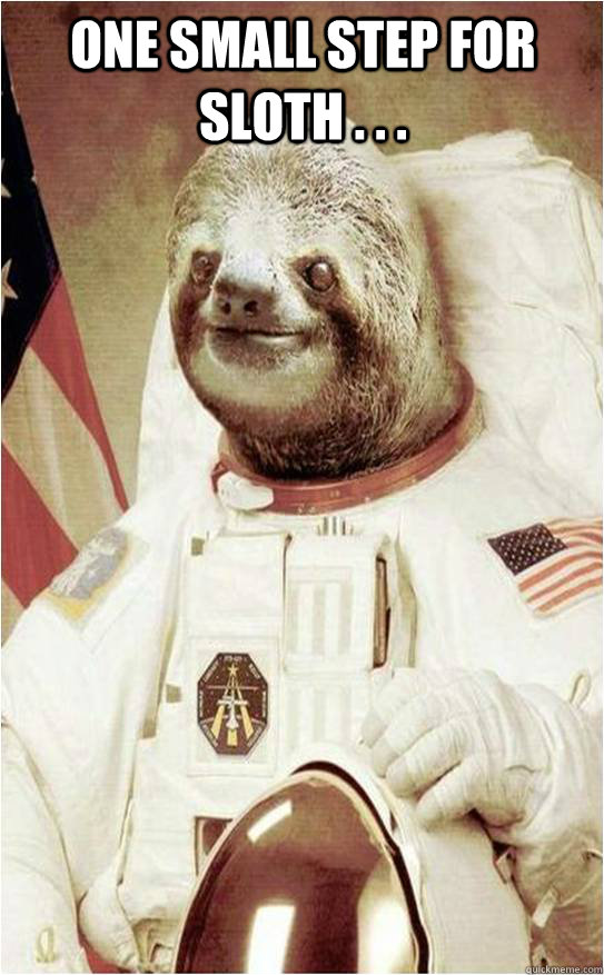 One Small Step For Sloth . . .   Astronaut Rape Sloth