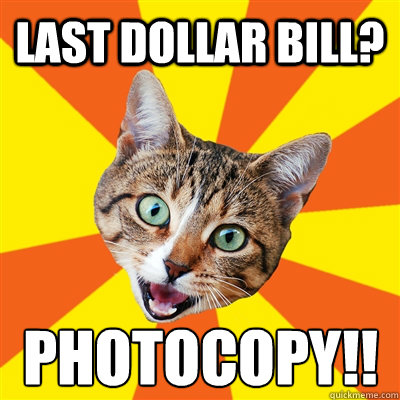 Last Dollar Bill? PHOTOCOPY!! - Last Dollar Bill? PHOTOCOPY!!  Bad Advice Cat