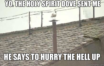 Yo. The holy spirit dove sent me He says to hurry the hell up  Sistine Seagull