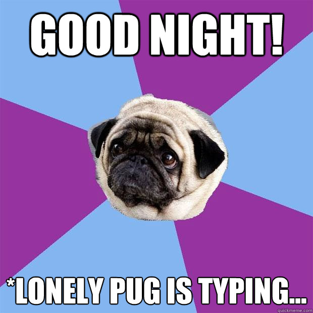 good night lonely pug is typing lonely pug quickmeme