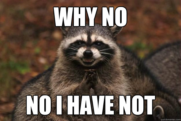 Why no no i have not - Why no no i have not  Evil Plotting Raccoon
