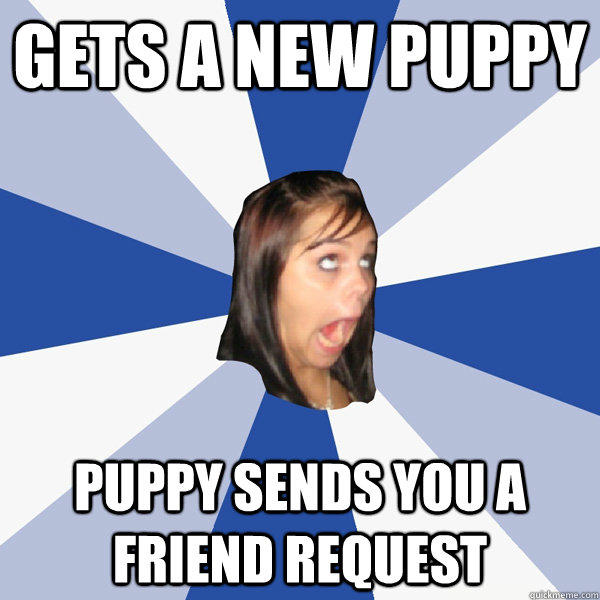 Gets a new puppy puppy sends you a friend request - Gets a new puppy puppy sends you a friend request  Annoying Facebook Girl