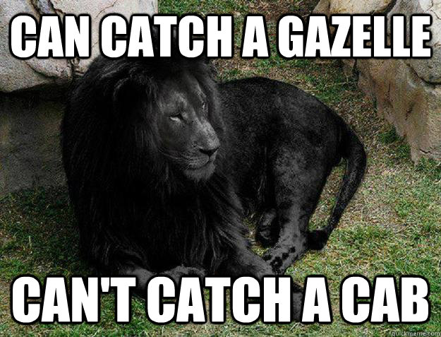can catch a gazelle can't catch a cab - can catch a gazelle can't catch a cab  Misc