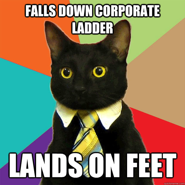 Falls down corporate ladder  lands on feet  - Falls down corporate ladder  lands on feet   Business Cat