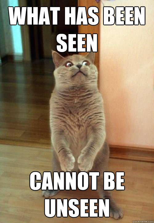 what has been seen cannot be unseen  Horrorcat