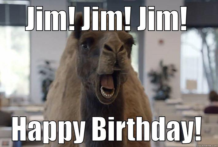happy birthday jim meme Birthday Camel   quickmeme happy birthday jim meme