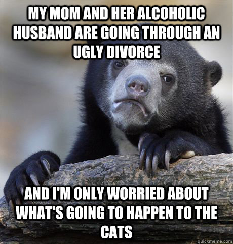 My mom and her alcoholic husband are going through an ugly divorce And I'm only worried about what's going to happen to the cats - My mom and her alcoholic husband are going through an ugly divorce And I'm only worried about what's going to happen to the cats  confessionbear
