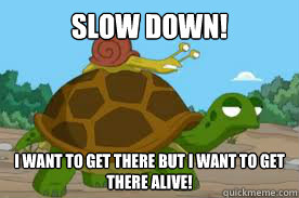 SLOW DOWN! I WANT TO GET THERE BUT I WANT TO GET THERE ALIVE!  Snail