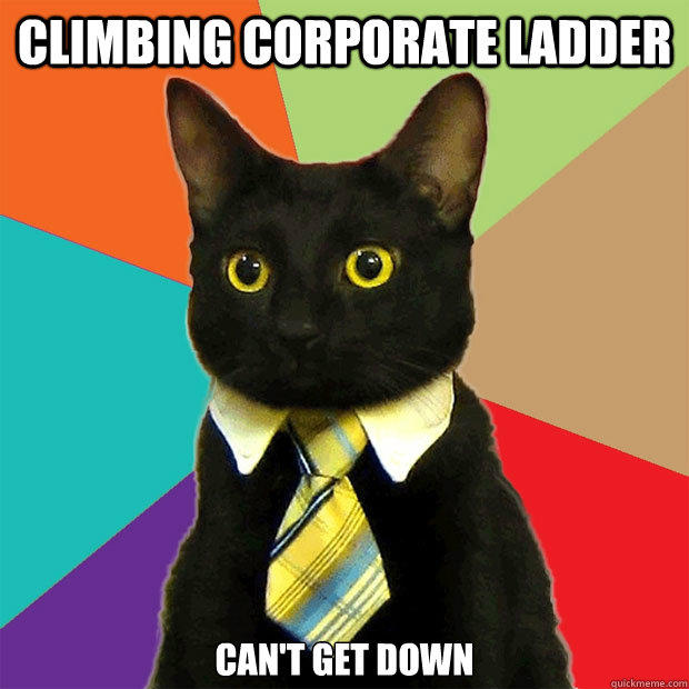 Climbing corporate ladder can't get down - Climbing corporate ladder can't get down  Business Cat