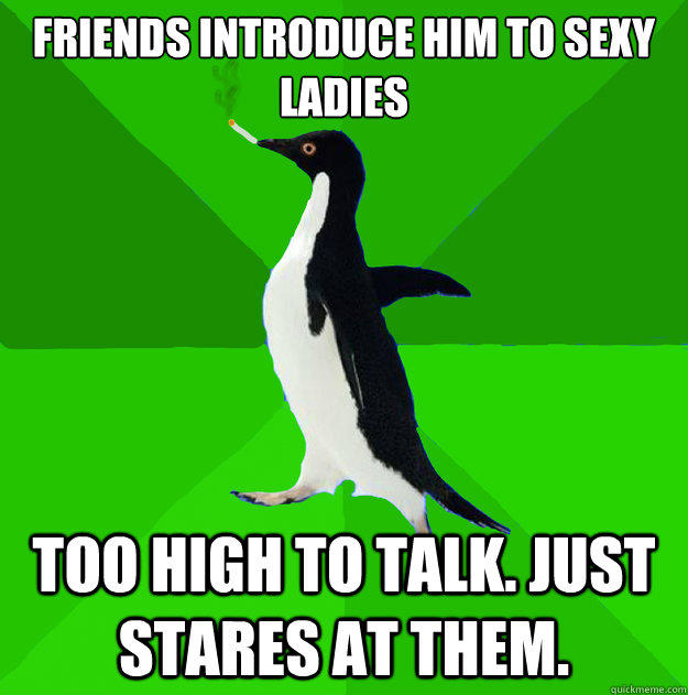 FriEnds introduce him to sexy ladies Too high to talk. Just stares at them.  Stoner Penguin