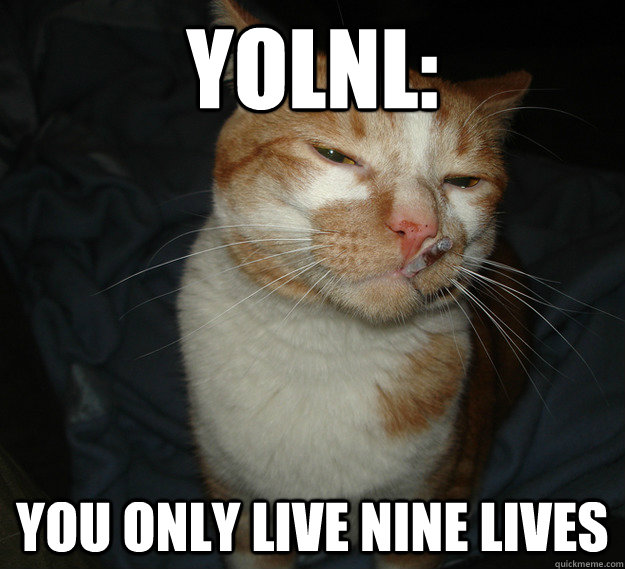 YOLNL: You only live nine lives - YOLNL: You only live nine lives  Cool Cat Craig