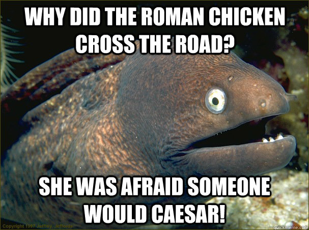 Why did the Roman chicken cross the road? She was afraid someone would caesar! - Why did the Roman chicken cross the road? She was afraid someone would caesar!  Bad Joke Eel