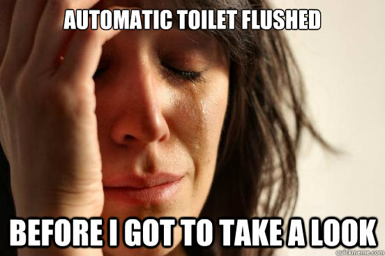 Automatic toilet flushed Before I got to take a look - Automatic toilet flushed Before I got to take a look  First World Problems
