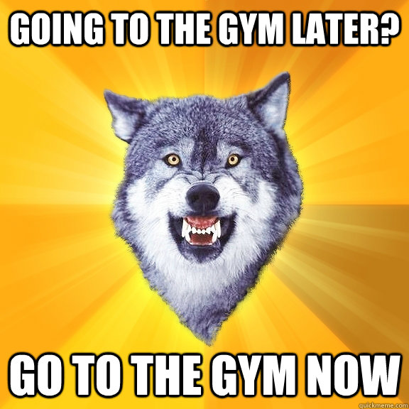 Going to the gym later? Go to the gym now - Going to the gym later? Go to the gym now  Courage Wolf