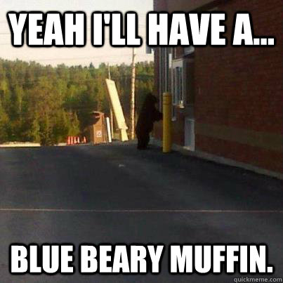 Yeah i'll have a... Blue Beary Muffin. - Yeah i'll have a... Blue Beary Muffin.  Tim Hortons Bear