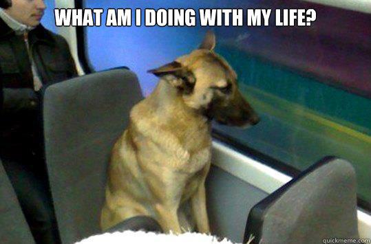 Image result for Commuter memes