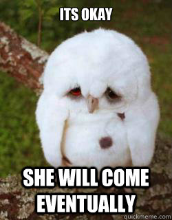 its okay  she will come eventually  - its okay  she will come eventually   Sad Owl