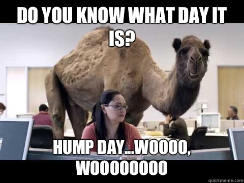 Do you know what day it is? Hump day...Woooo, Woooooooo