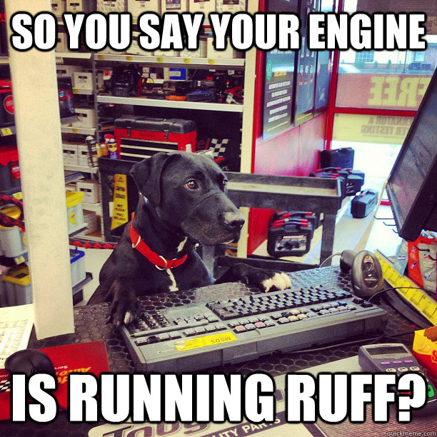 so you say your engine is running ruff? - so you say your engine is running ruff?  Auto Parts Dog