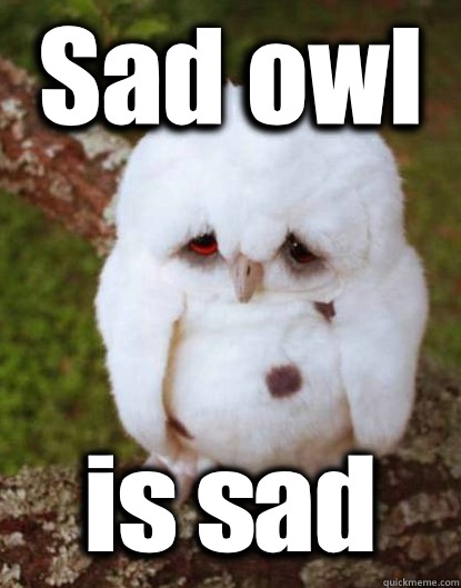 Sad owl is sad - Sad owl is sad  Depressed Baby Owl
