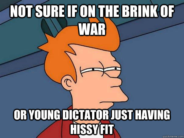 Not sure if on the brink of war Or young dictator just having hissy fit - Not sure if on the brink of war Or young dictator just having hissy fit  Futurama Fry