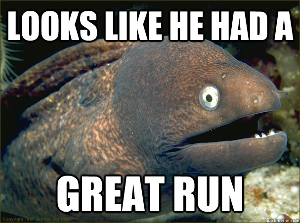 Looks like he had a Great Run - Looks like he had a Great Run  Bad Joke Eel