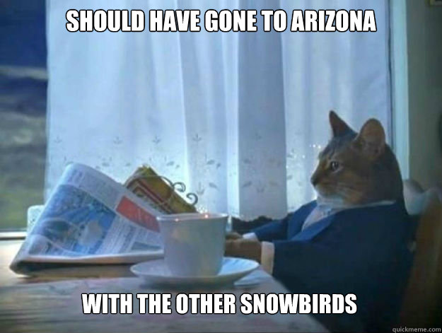 Should have gone to Arizona with the other snowbirds