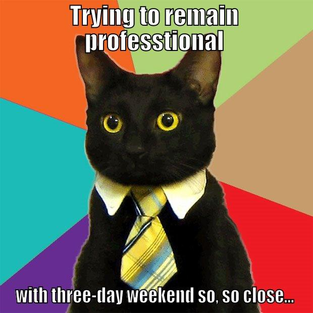 TRYING TO REMAIN PROFESSTIONAL WITH THREE-DAY WEEKEND SO, SO CLOSE... Business Cat