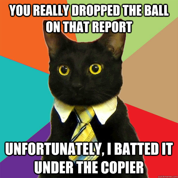 you really dropped the ball on that report unfortunately, i batted it under the copier - you really dropped the ball on that report unfortunately, i batted it under the copier  Business Cat