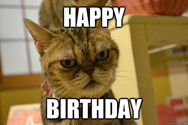 HAPPY BIRTHDAY - Angry Cat - quickmeme