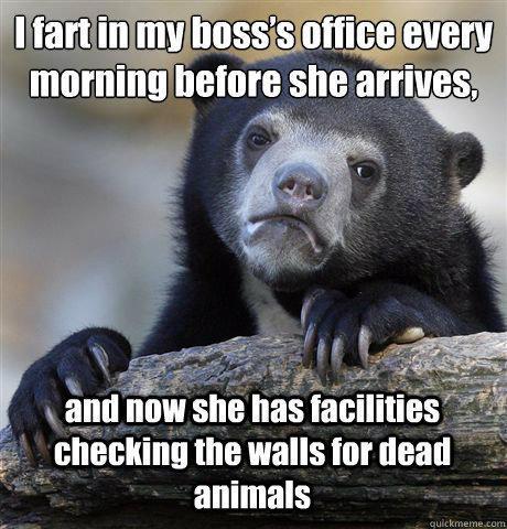 I fart in my boss's office every morning before she arrives, and now she has facilities checking the walls for dead animals  Confession Bear