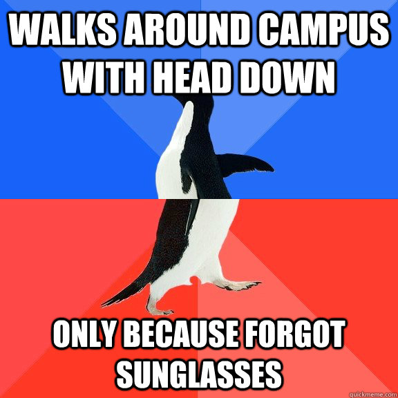 Walks around campus with head down only because forgot sunglasses - Walks around campus with head down only because forgot sunglasses  Socially Awkward Awesome Penguin