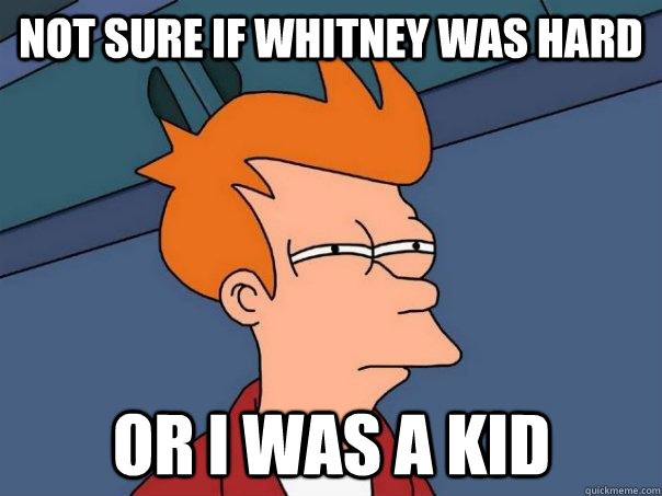 Not sure if whitney was hard Or I was a kid - Not sure if whitney was hard Or I was a kid  Futurama Fry