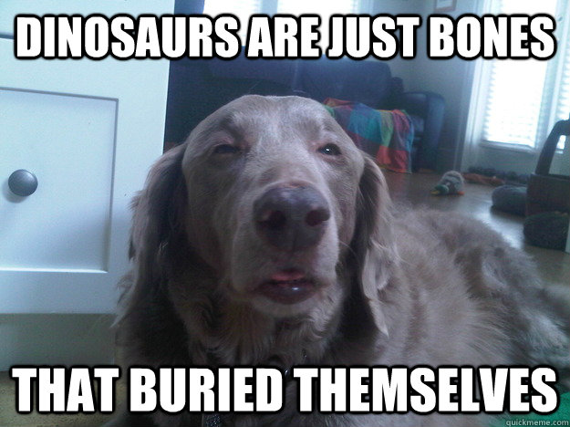 Dinosaurs are just bones That buried themselves - Dinosaurs are just bones That buried themselves  10 Dog