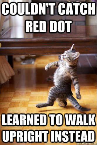 Couldn't catch red dot Learned to walk upright instead