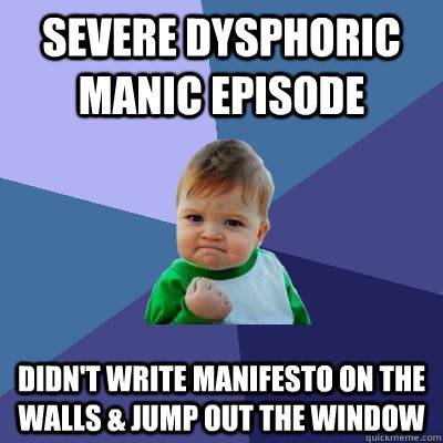 severe Dysphoric manic episode Didn't write manifesto on the walls & jump out the window - severe Dysphoric manic episode Didn't write manifesto on the walls & jump out the window  Success Kid