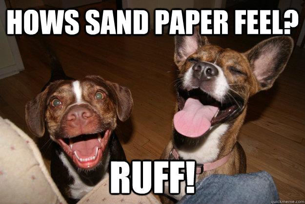 hows sand paper feel? ruff!  Clean Joke Puppies