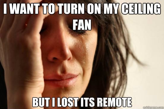 I want to turn on my ceiling fan But I lost its remote - I want to turn on my ceiling fan But I lost its remote  First World Problems