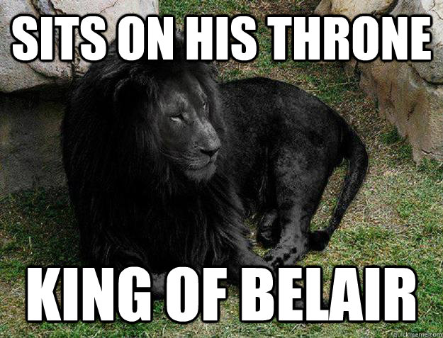 Sits on his throne king of belair - Sits on his throne king of belair  Black Lion Problems