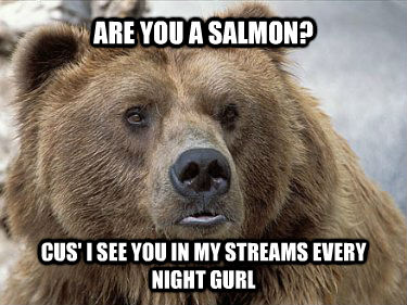 ARE YOU A SALMON? CUS' I SEE YOU IN MY STREAMS EVERY NIGHT GURL - ARE YOU A SALMON? CUS' I SEE YOU IN MY STREAMS EVERY NIGHT GURL  areyouasalmon