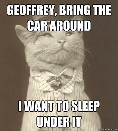 GEOFFREY, BRING THE CAR AROUND I WANT TO SLEEP UNDER IT  Aristocat