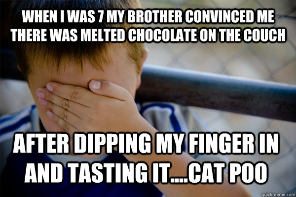 When i was 7 my brother convinced me there was melted chocolate on the couch after dipping my finger in and tasting it....cat poo - When i was 7 my brother convinced me there was melted chocolate on the couch after dipping my finger in and tasting it....cat poo  Confession kid