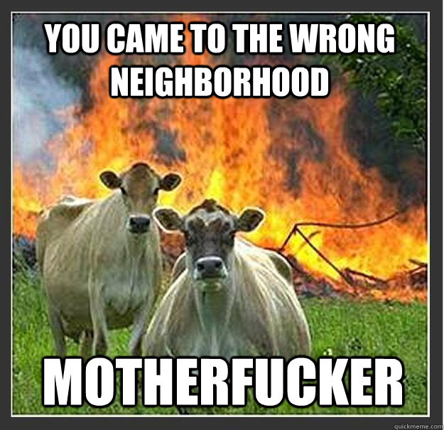 You came to the wrong neighborhood motherfucker - You came to the wrong neighborhood motherfucker  Evil cows