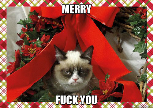 Merry Fuck you - Merry Fuck you  A Grumpy Cat Christmas