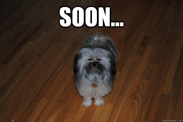 Soon...  - Soon...   Misc